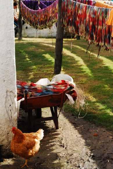 Manos del Uruguay - Año Internacional de las Cooperativas